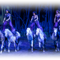 cavalia, horses, canadianmomeh, blog, blogger