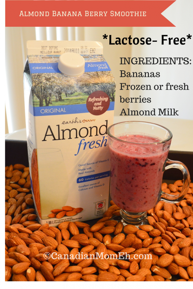 Almond Fresh, smoothie recipe, Earth's own almond fresh, almond fresh smoothie, delicious healthy smoothie, almond banana berry smoothie, canadianmomeh.com, canadianmomeh, fariha naqvi-mohamed, top canadian blogger, mommy blogger