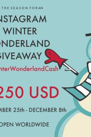 Winter Wonderland Cash Facebook -1